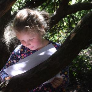 children outdoors tree climbing